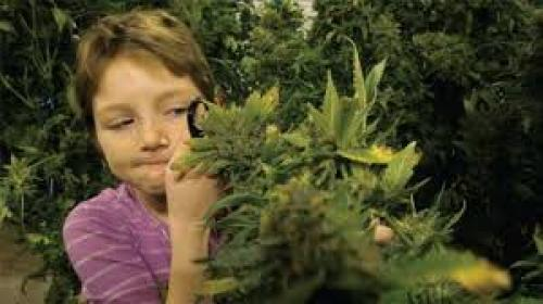 Cannakids & THC: Revisiting Brave Mykayla, Who Shared With The World Her Controversial Cannabis Cure