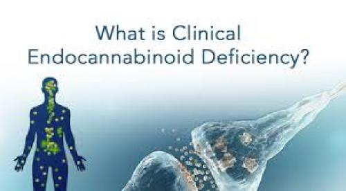 The Endocannabinoid System and Clinical Endocannabinoid Deficiency