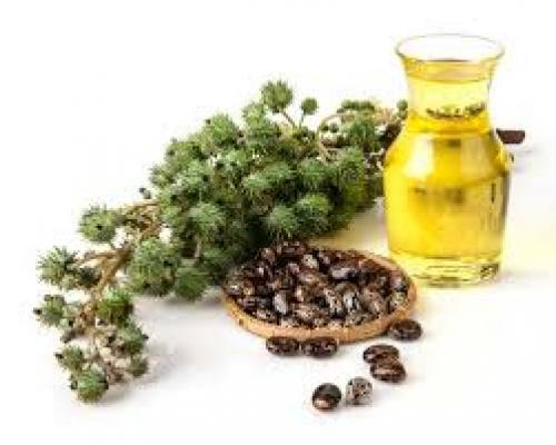 Surprising HEALTH BENEFITS of CASTOR OIL For Hair, Skin & Health