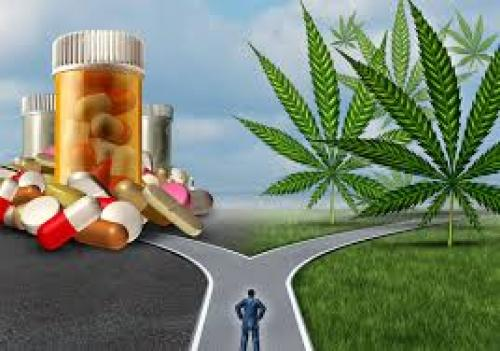 Opioid Epidemic and Exiting with Cannabis