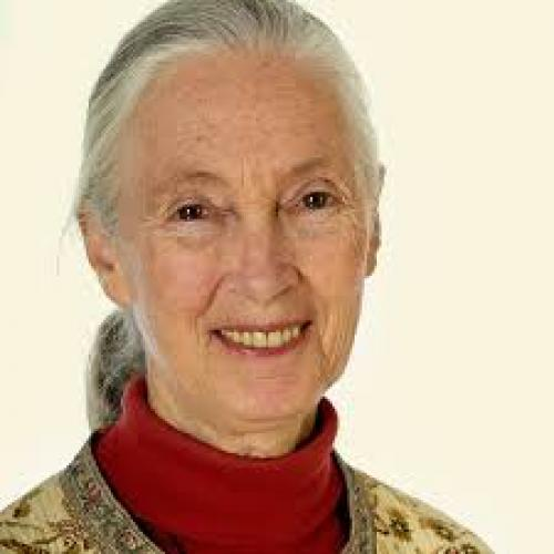 JANE GOODALL - Mother Earth
