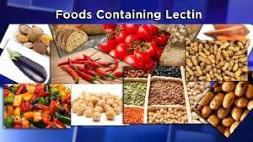 Dr. Paul Mason - 'How lectins impact your health - from obesity to autoimmune disease'