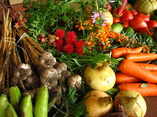 Doctors may soon be prescribing vegetables instead of drugs to prevent disease
