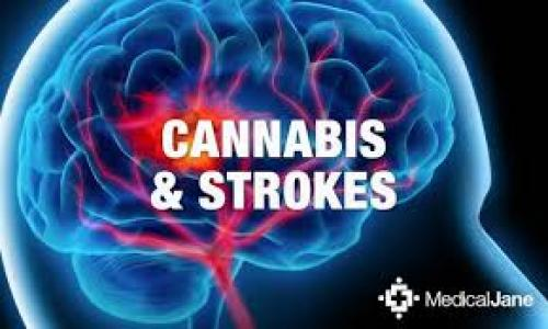 Study Says Marijuana Greatly Reduces Risk Of Stroke