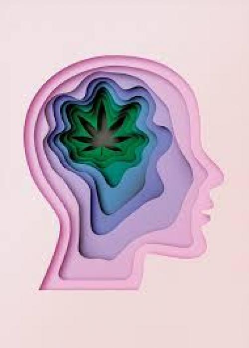 Study: THC Has More Therapeutic Benefits Than We Thought