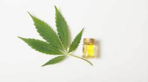 Everything you need to know about CBD oil